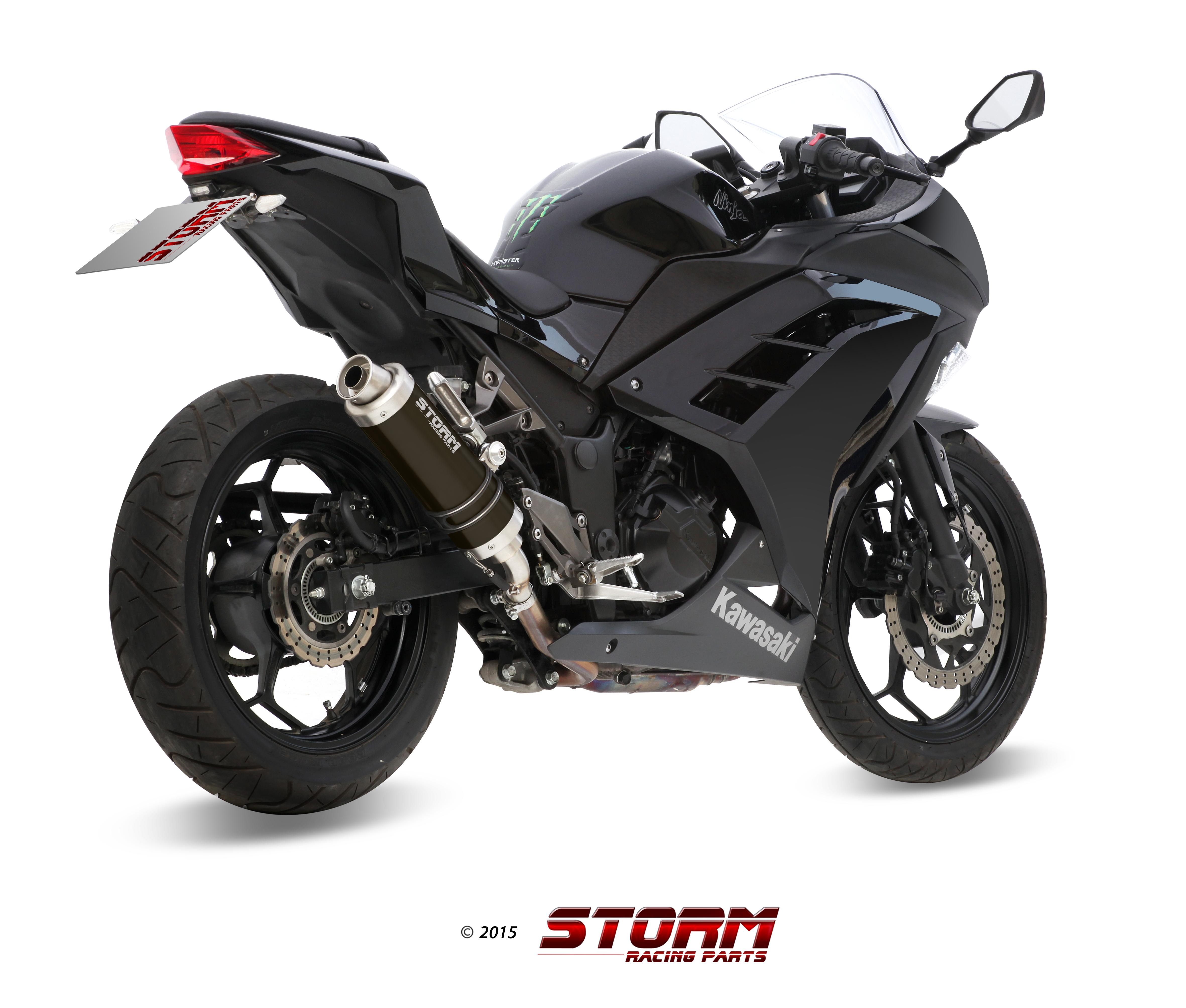 KAWASAKI NINJA 300 Exhaust Storm Gp Black stainless steel K.038.LXSB